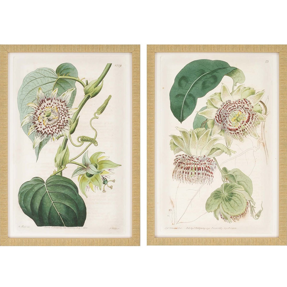 products antique flowers framed wall art b 1604  68800.1488656513.1280.1280