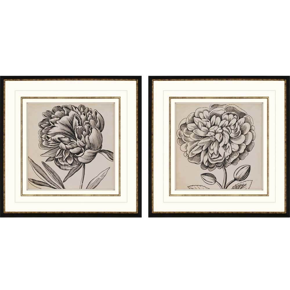 products graphic floral i framed wall art b 7958  69485.1488656921.1280.1280