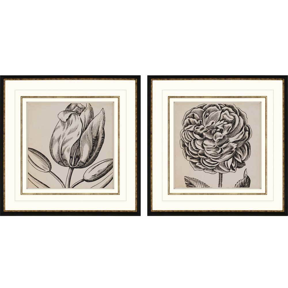products graphic floral ii framed wall art b 7959  86434.1489023706.1280.1280