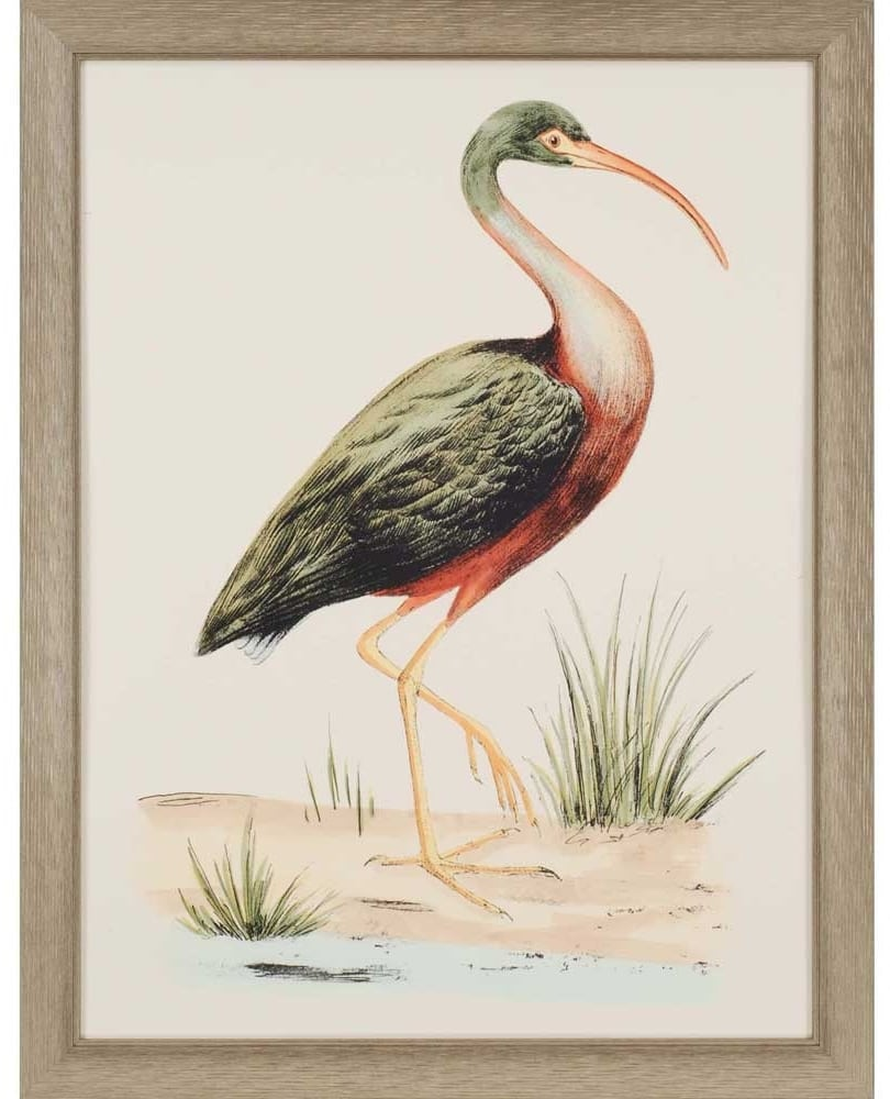 products water bird i framed wall art b 1458  24813.1488656496.1280.1280