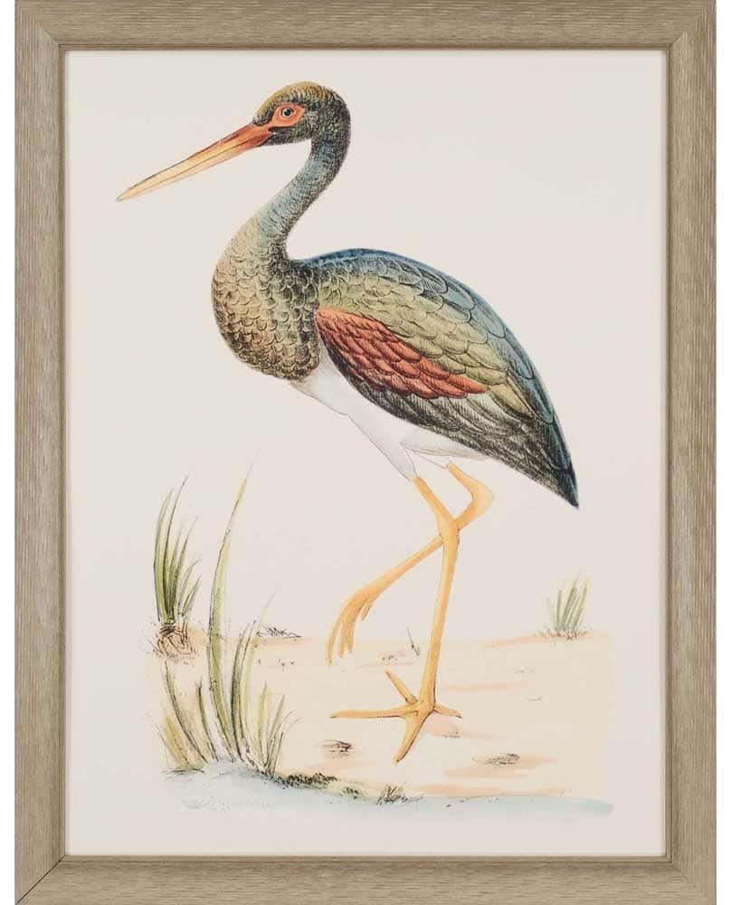 products water bird ii framed wall art b 1459  17853.1488656496.1280.1280