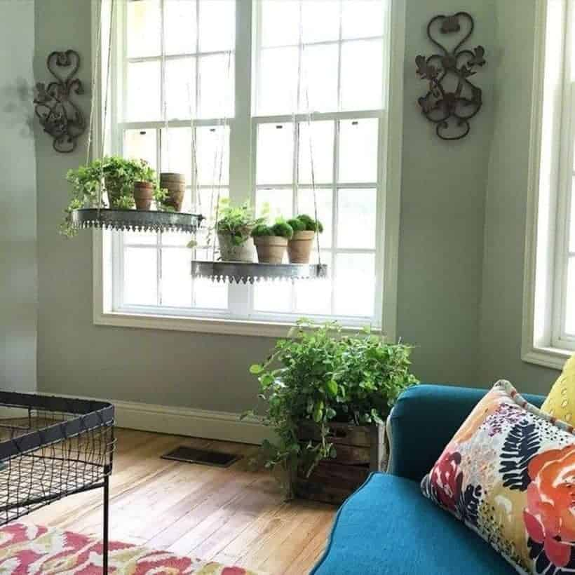 Most-Perfect-Floating-Window-Plants-1